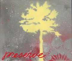 Preserve II (11x13)