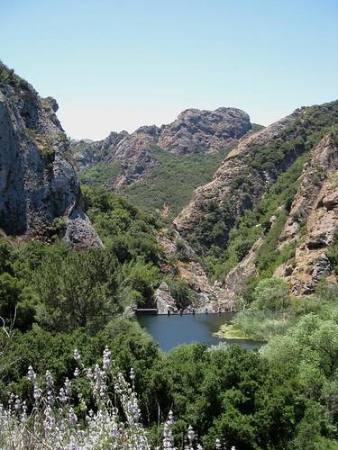 Malibu Creek State Park 2195a