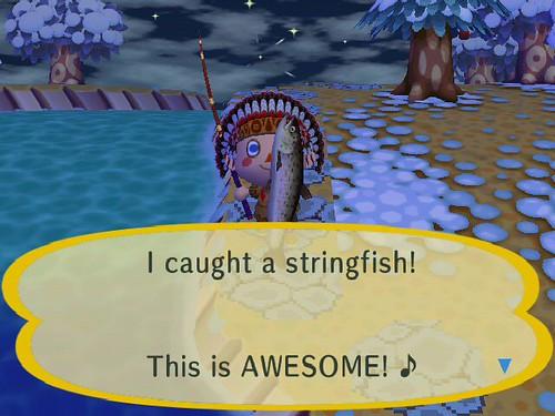 Yay for Stringfish!