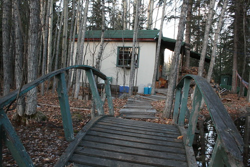 our lovely little cabin in the woods.