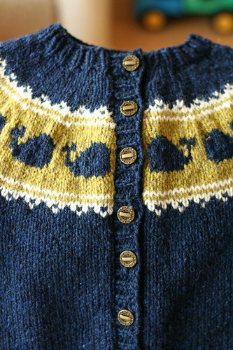 Pod of Cetaceans Cardigan, button band