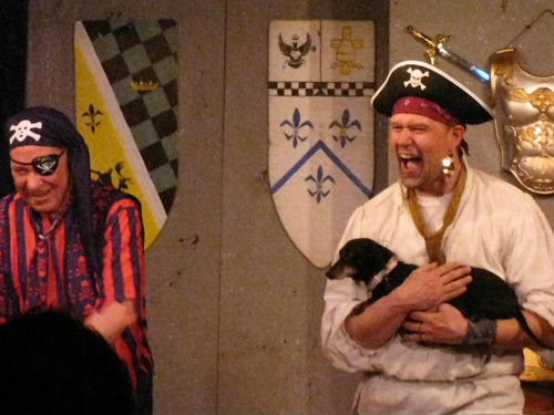 The pirates rally! Even with their fearsome Hound reduced to a tiny dog by the Fairy Godmother!