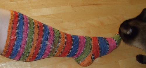 Circus Knee Socks