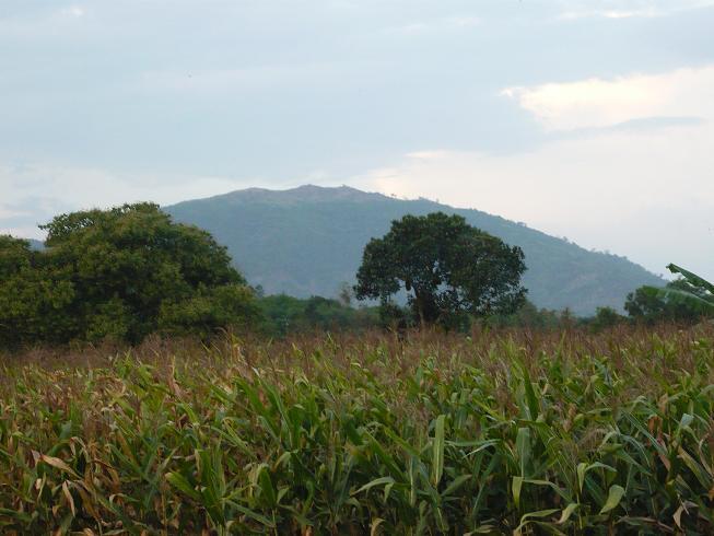 Đằng xa là núi Gia Lào