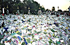 Flowers for Princess Diana's Funeral