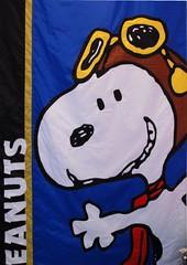 Peanuts Hi Snoopy - photo Goria - click