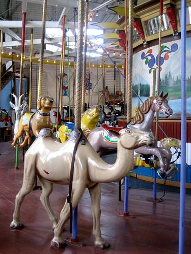 Camel Carousel