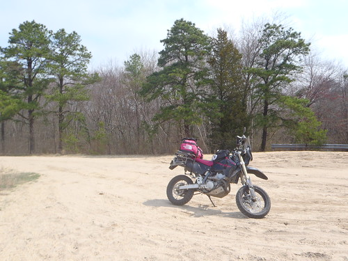 South Jersey sand at Success Lake