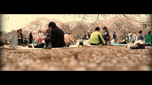 "Photo Credit: ""Hanami or Flower Viewing"" by Jesslee Cuizon"