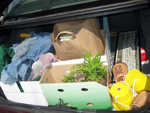 Junk In My Trunk 4-25-09
