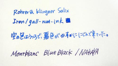 Rohrer&Klingner Salix
