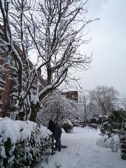 Snow Day 02-02-09 (28)