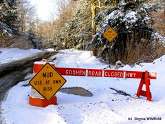 Mud Season Road Closure
