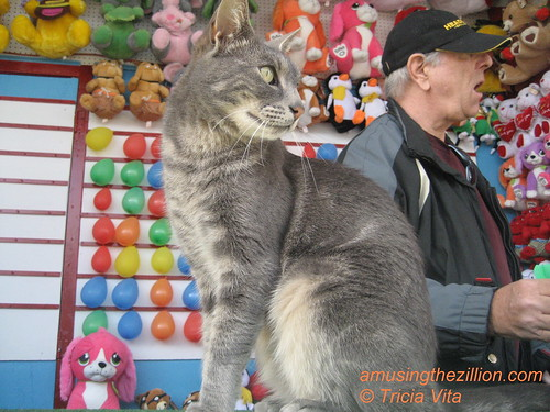 Target the Cat & Jimmy Working the Balloon Dart on Coney Islands Bowery.  Photo © Tricia Vita/me-myself-i via flickr