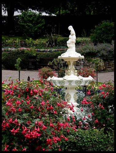 Dingle Garden, fountain and fuchsias
