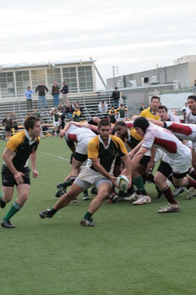 rugbyweb