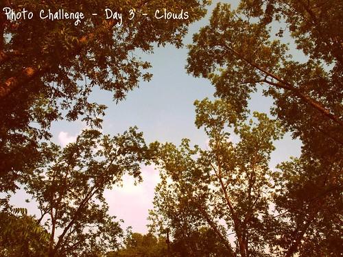 30-day photo challenge - day 3