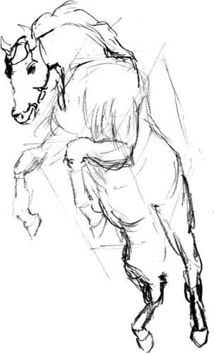 Horse Skeleton, part 4