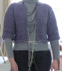 sweater progess