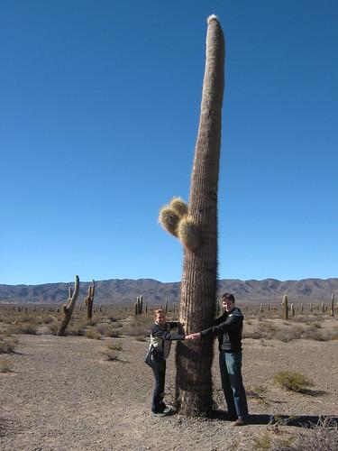 At Parque Nacional Los Cordones (the big cacti)