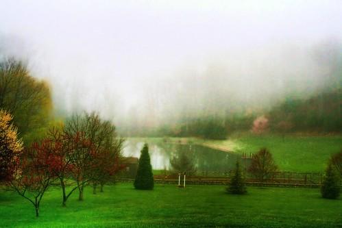 A Wonderland in Spring