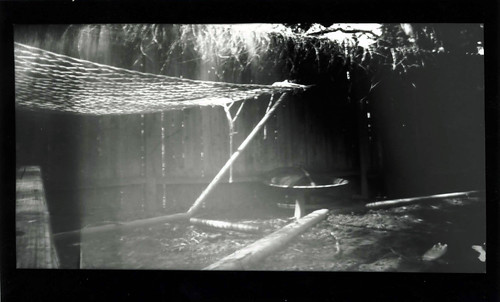 Pinhole Backyard Hammock