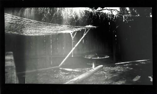 Pinhole Backyard Hammock