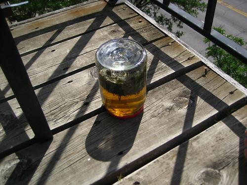Sassafras sun tea