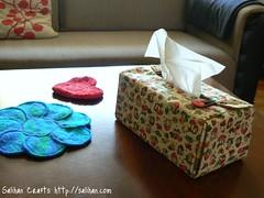 Tissue Box Cover (Living Room)