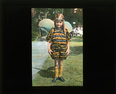 Girl dressed like a bee