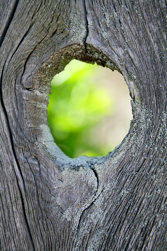 Through the knothole