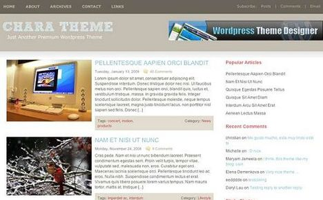 CHARA Free WordPress Theme