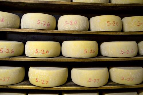 May cheese