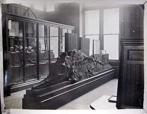 The fossil Gallery in the early 1900s
