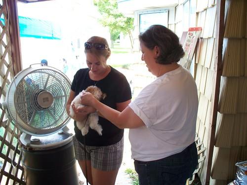 Kayla and Aimee meet Sandies new puppy, Jack