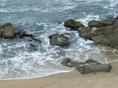 笹川流れの海岸
