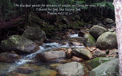 Psalm 42:1-2