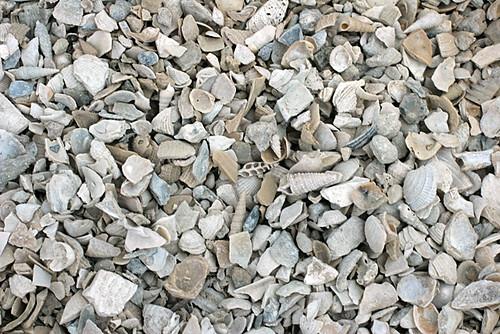 Gravel-Detail