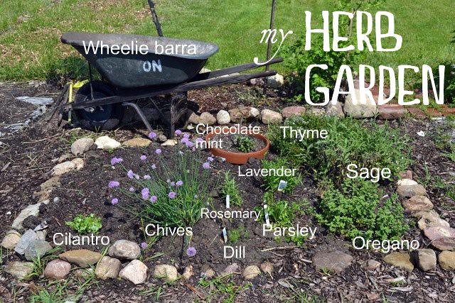 Herb garden of majesty