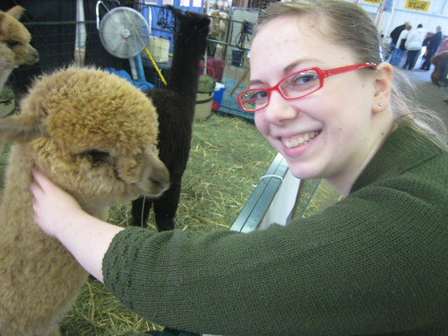 pictures from Alpacapalooza