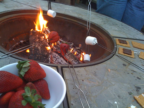 roasting strawberries and marshmallows