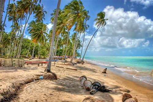 Praia de Peroba, Maragogi | HDR