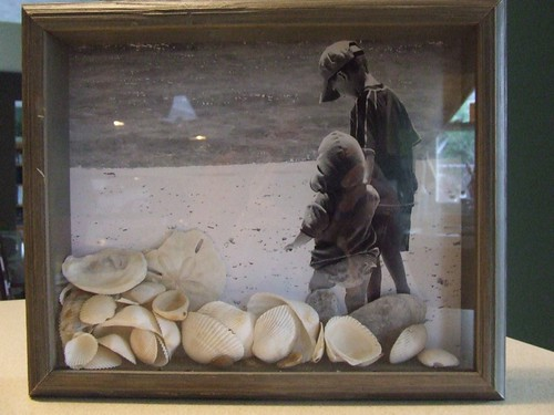 Shell Shadowbox2