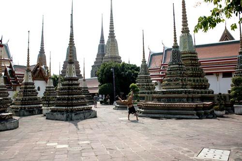 Bangkok Cartwheel.jpg