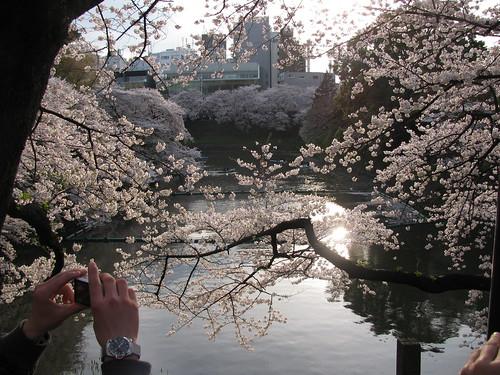 Davanti allingresso del parco Kitanomaru
