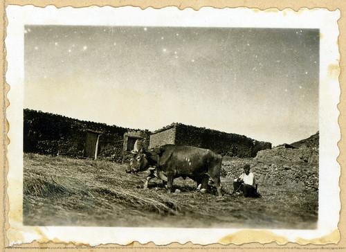 ADACAS - 05-9: Nueno, Huesca. 1921-1924