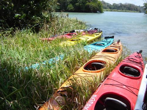 Kayaks esperando mientras almorzamos.