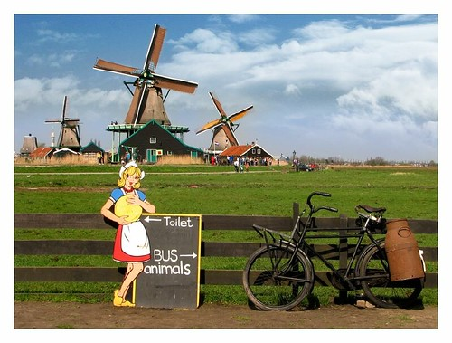View from a cheese farm - Zaanse Schans by you.