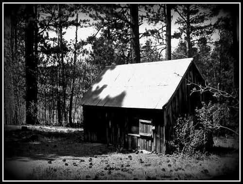 Spencer's Cabin