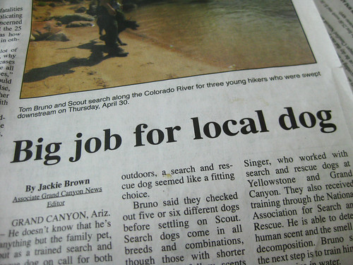 Local dog makes good